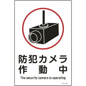 日本緑十字 JAPAN GREEN CROSS 緑十字 イラスト標識 防犯カメラ作動中 450×300mm エンビ