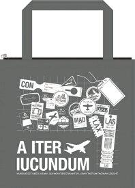 TTC エアポートギフトバッグ 小 TOT003-00