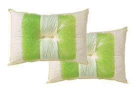 イケヒコ IKEHIKO 森の眠りひばパイプ枕 2個セット 普通(35×50×10cm)【日本製】