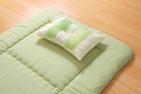 イケヒコ IKEHIKO 森の眠りひばパイプ枕 普通(35×50×10cm)【日本製】