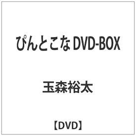 エイベックス・ピクチャーズ avex pictures ぴんとこな DVD-BOX 【DVD】
