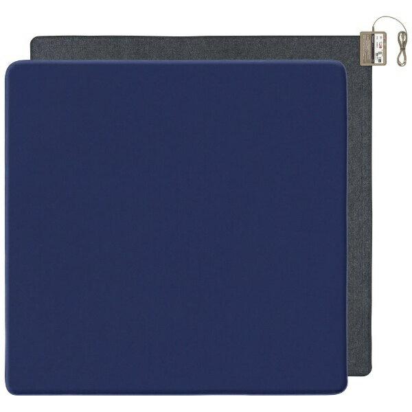 パナソニック Panasonic DC-2NKB10 ホットカーペット ブルー [2畳相当 /カバー+本体][DC2NKB10]
