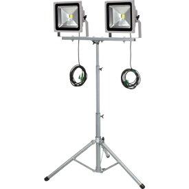 日動工業 NICHIDO 日動 LED作業灯 50W 二灯式三脚