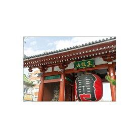 セキセイ SEKISEI PKN-733 パックンカバーノート高透明A5浅草寺 雷門