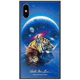 藤家 Fujiya iPhone XS Max 6.5インチ用 ラッセン ガラスハイブリッド A. SECRET PATH