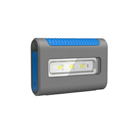 フィリップス PHILIPS LPL55X1 カードサイズ型LEDライト兼ヘッドライト