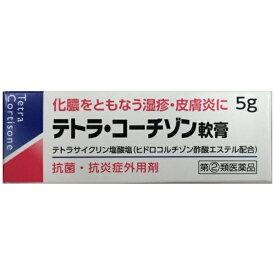【第(2)類医薬品】テトラコーチゾン軟膏 5g伊丹製薬
