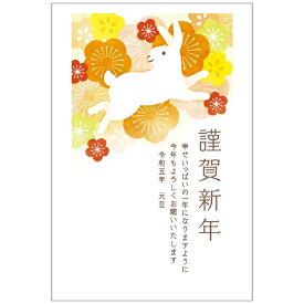 総合商研 SOUGOU SHOUKEN 令和2年(2020年)用 子年イラスト入り お年玉付き年賀はがき「B410」(3枚入り)