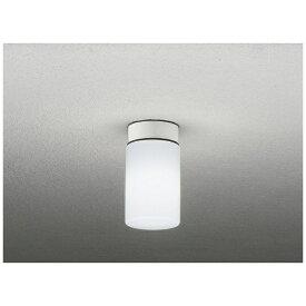 大光電機 DAIKO DXL-81337C 浴室照明 [昼白色 /LED /要電気工事]