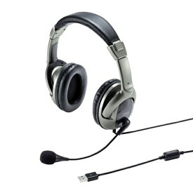 サンワサプライ SANWA SUPPLY USBヘッドセット MM-HSU10GM [USB /両耳][MMHSU10GM]