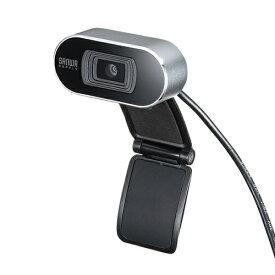 サンワサプライ SANWA SUPPLY CMS-V45 ウェブカメラ シルバー [有線][CMSV45S]