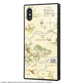 イングレム Ingrem iPhone XS / X用 『ディズニーキャラクター』 耐衝撃ガラスケース KAKU IQ-DP20K1B/PO002 『くまのプーさん』_33