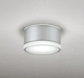 オーデリック ODELIC OG254600ND 玄関照明 マットシルバー [昼白色 /LED /防雨型 /要電気工事]