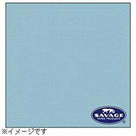 サベージ SAVAGE 背景紙 2.72×11m/No.41 ブルーミスト RL41-12