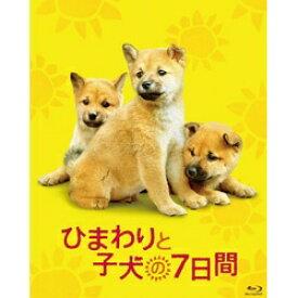 松竹 Shochiku ひまわりと子犬の7日間【ブルーレイ】