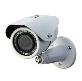 コロナ電業(防犯) AHD200万画素屋外用カメラ(オートフォーカス&ズーム・赤外線) TR-H210VZ