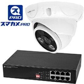 プラネックスコミュニケーションズ PLANEX COMMUNICATIONS CS-QP50F-IMP ネットワークカメラ スマカメ Professional ドームタイプ [暗視対応 /有線・無線 /屋外対応]