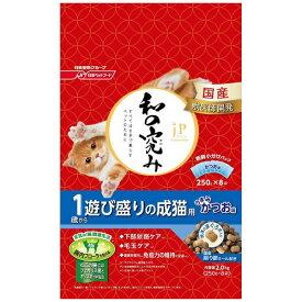日清ペットフード Nisshin Pet Food JPスタイル 和の究み 1歳から 遊び盛りの成猫用 2kg
