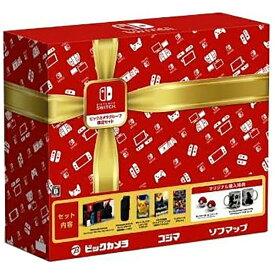 任天堂販売 Nintendo Switch ビックカメラグループ 限定セット[2017年3月モデル]〔ニンテンドースイッチ 本体 ゲーム機〕