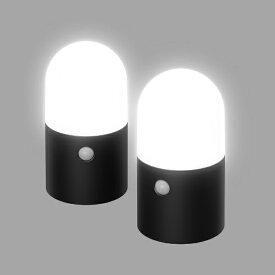 アイリスオーヤマ IRIS OHYAMA 乾電池式LEDガーデンセンサーライト 丸型 2個セット