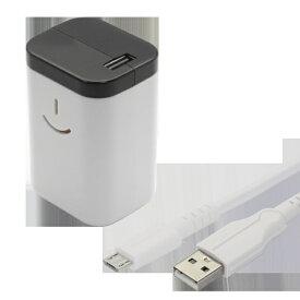 OWLTECH オウルテック 緊急CHARGE!! 乾電池があればすぐに使える!! 乾電池式モバイルバッテリー 超タフケーブル&Type-C変換コネクタ付 「電池でGO!!USBタイプ」 ホワイト OWL-DBU1KMC-WH [1ポート /乾電池タイプ]