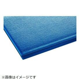 テラモト TERAMOTO テラモト テラクッション極厚 450×600 ブルー MR-069-020-3