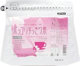 源齋 源齋 ポッコリすっきり茶 5包
