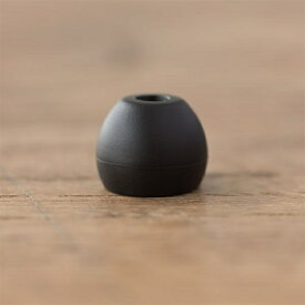 FINAL ファイナル イヤピース Eタイプ ALLサイズ 10個 FI-EPEBLBL2A4 Black