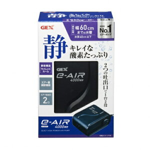 e〜AIR 4000WB