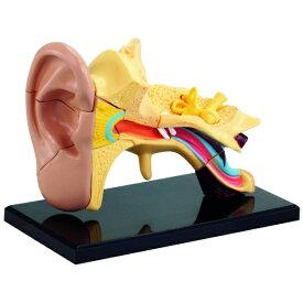 童友社 DOYUSHA 人体模型シリーズ 耳(7.7cm)