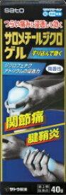 【第2類医薬品】サロメチールジクロゲル(40g)〔外用消炎剤〕佐藤製薬 sato
