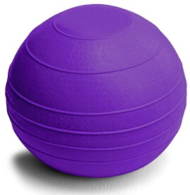 La-VIE ラ・ヴィ ウェイトボール(2kg/パープル) 3B-3431