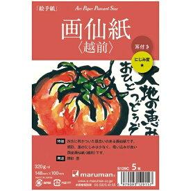 マルマン maruman アートペーパー 画仙紙(越前) 5枚 S129C