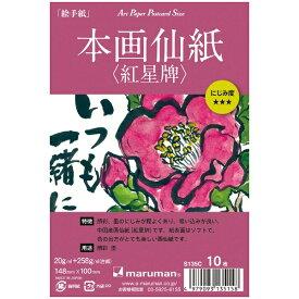 マルマン maruman アートペーパー 本画仙紙(紅星牌) 10枚 S135C