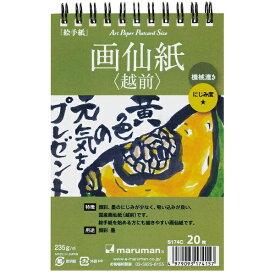 マルマン maruman アートペーパー 画仙紙(越前) 20枚 S174C