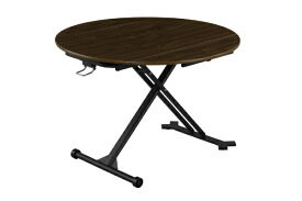 生毛工房 アース110EX WAL伸長式昇降テーブル