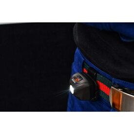 ZEXUS ZEXUS LED ヘッドライト ZX−RR10 ZX-RR10