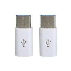 GROOVY グルービー [USB-C オス→メス micro USB]2.0変換アダプタ 充電・転送(2個セット) CAD-P2W ホワイト[CADP2W]