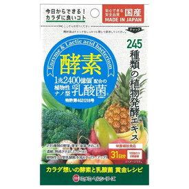 ミナミヘルシーフーズ minami 酵素プラス植物性ナノ型乳酸菌 31日分 62球【wtcool】