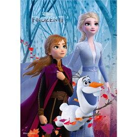 テンヨー ジグソーパズル D-300-016 隠された秘密(アナと雪の女王2)