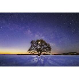 やのまん YANOMAN ジグソーパズル 03-906 ハルニレの木と天の川(北海道)