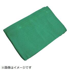 萩原工業 HAGIHARA 萩原 塗装シート グリーン 1.8m×5.4m BRN1854-GN