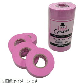 カモ井加工紙 KAMOI カモ井 マスキングテープ建築用(4巻入) LUPINCOUPER-30
