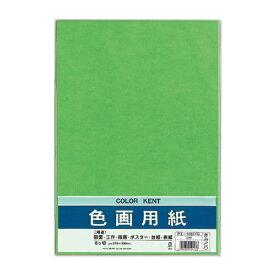 マルアイ MARUAI 色画用紙N833きみどり PIN83YG