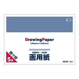 アピカ APICA 四ツ切画用紙5枚 4ZG5