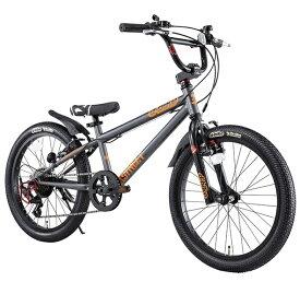 アイデス ides 20型 子供用自転車 D-Bike Xstreet 20S(ダークメタ/外装6段変速) 【適応身長:111〜138cm/6歳前後向け】【組立商品につき返品不可】 【代金引換配送不可】