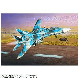 """ファインモールド FineMolds 1/72 米海軍 F-14A トムキャット""""トップガン"""""""