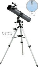 レイメイ藤井 天体望遠鏡(反射式・赤道儀) RXA190