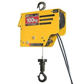 オーエッチ工業 OH 電動ワイヤーホイスト100DWH-100