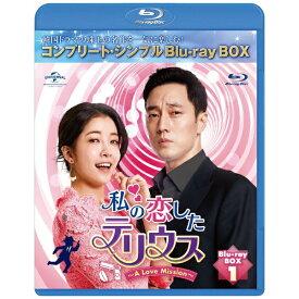 NBCユニバーサル NBC Universal Entertainment 私の恋したテリウス〜A Love Mission〜 BD-BOX1 <コンプリート・シンプルBD-BOX6,000円シリーズ>【ブルーレイ】